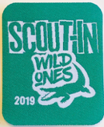 Scout-In badge 2019